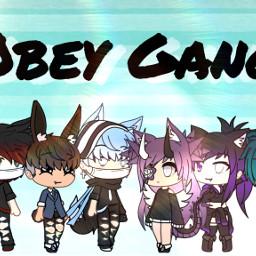 obey gang newoc