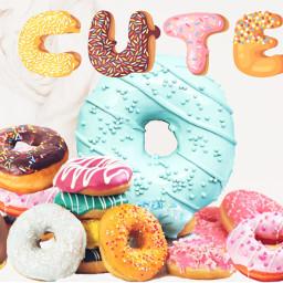 ircgourmet gourmet freetoedit cute donuts