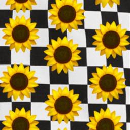 checkerboard emoji sunflowers background aesthetic freetoedit