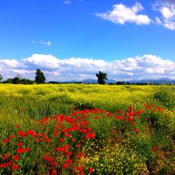pcintonature intonature nature countryside countrysidelandscape