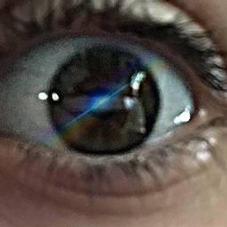 freetoedit eyes pretty hazelbrowneyes