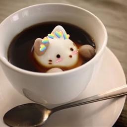 cat coffee spoon hotchocolate kawaii freetoedit