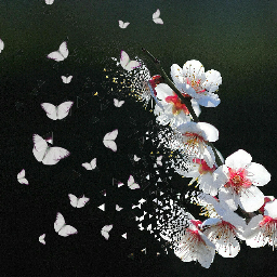 freetoedit dispersiontool edit butterflies flowers ecdispersion