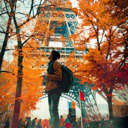 mikeguruvisuals freetoedit france fall leaves