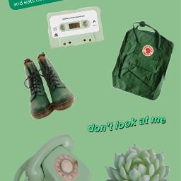 green backgound aesthetic forthephone freetoedit