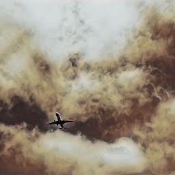 airplane aircraft aeroplane landing lax