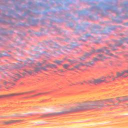 sunrise freetoedit autumn