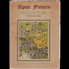 freetoedit flowers booklet aesthetic nichememe