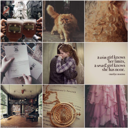 freetoedit aesthetic collage hermionegranger books hermione harrypotter emmawatson hair brown pink calm people picsart edit harmione cat