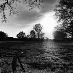 blackandwhite stillness mood eveningmood outandabout