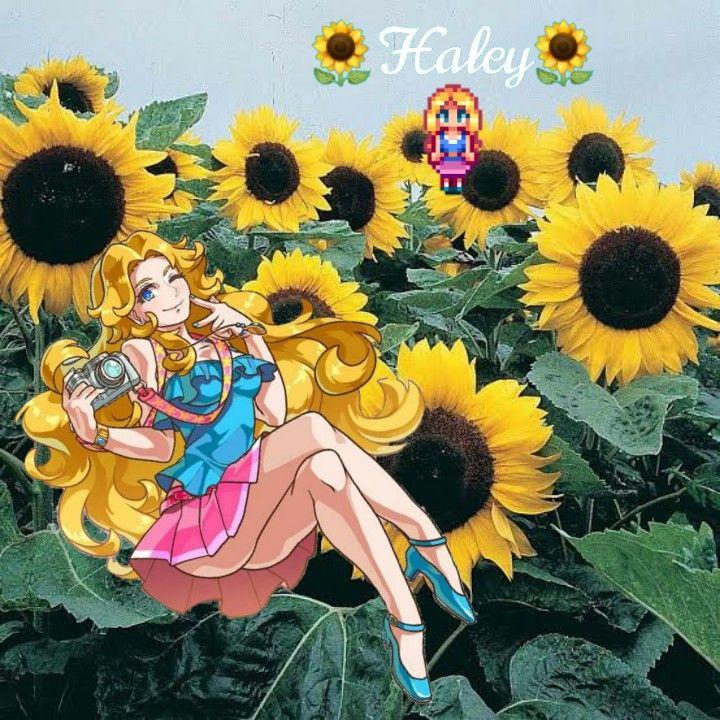 Sun🌻🌻 sunflower haley stardewvalley