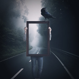 surreal pictureframe road crow atmospheric freetoedit