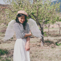 wingsofanangel wings angel picsarteffects freetoedit