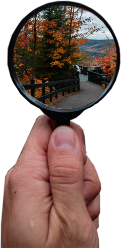 magnifyingglass hand wood forest fall freetoedit