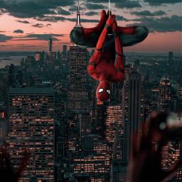 freetoedit tomholland spiderman spidermanhomecoming newyorkcity