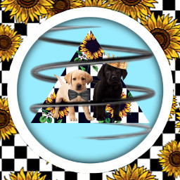 dogs notfreetoedit flowers cute wallpaper freetoedit