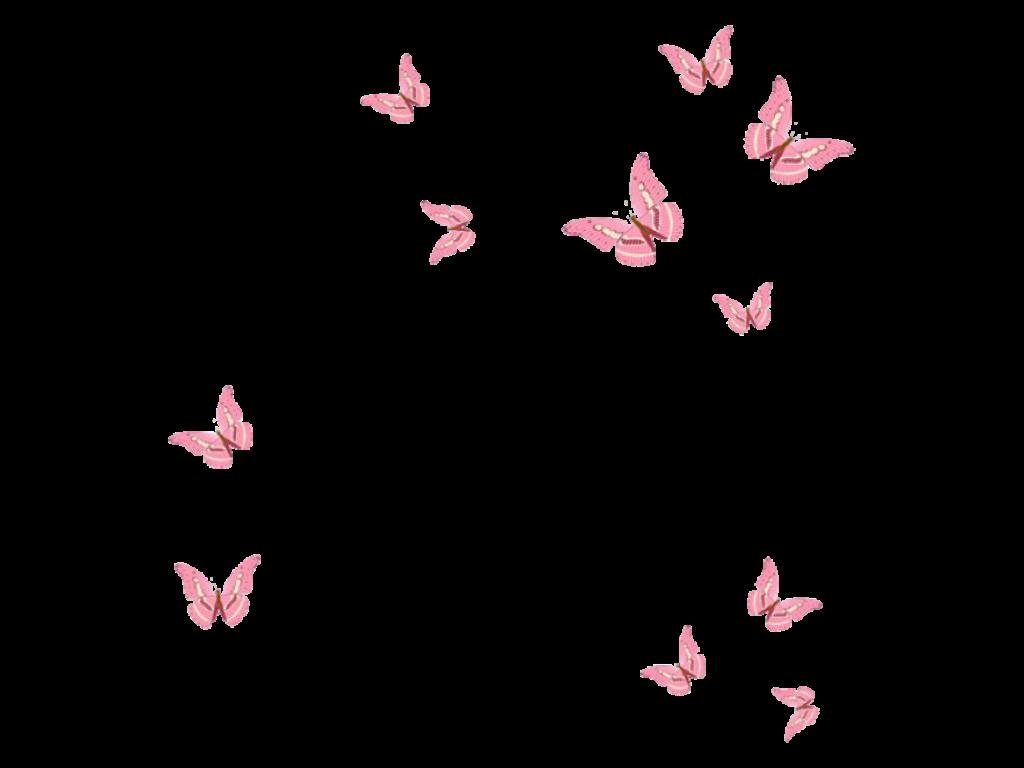 Aesthetic Butterfly Wallpaper Pink