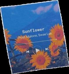 sunflower postmalone aesthetic arthoe yellow freetoedit