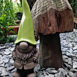 gnomes mygarden magiceffectmoonlight hdr2 freetoedit