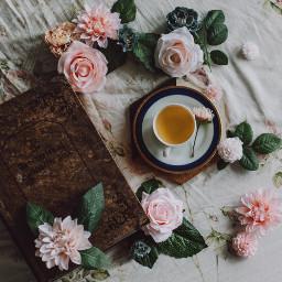 rose tea flowers freetoedit