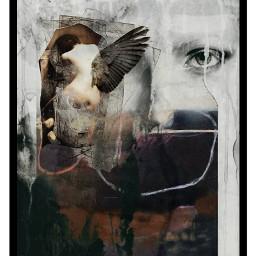 myedit girl art wings dark abstract babelart overlay freetoedit