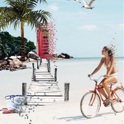 freetoedit beach toolazytoputhashtags