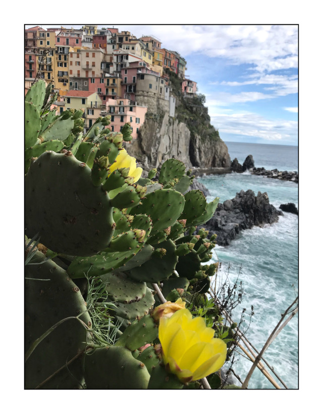 #freetoedit #italy #holidays #liguria #cinqueterre #sea #love
