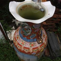 pconthegrass onthegrass vase weird bulb
