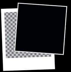 template photo polaroid blank editing freetoedit