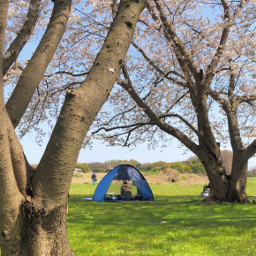 pccampday campday park tent nature
