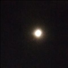 moonnight freetoedit