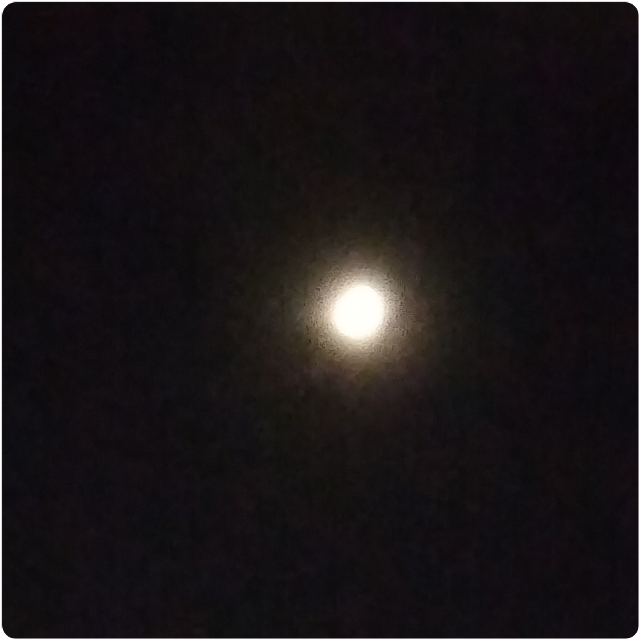 #moonnight
