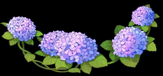 #anime #flower #flowers #hydrangea