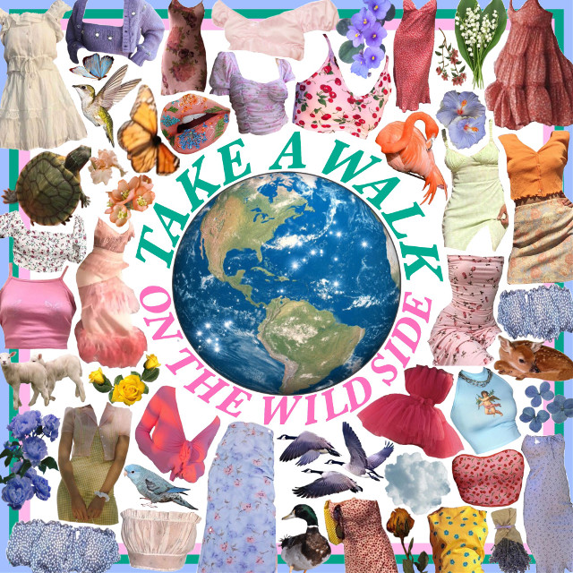 #freetoedit #moodboard #nature #world #planet #countryside #tropical #aesthetic