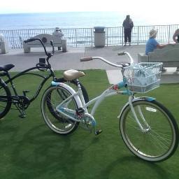riding bicycling exercise sightseeing photography pcbusymonday