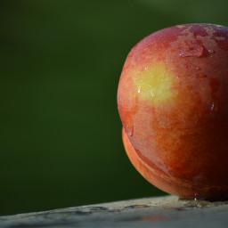 freetoedit photography stilllifephotography fruitbasket
