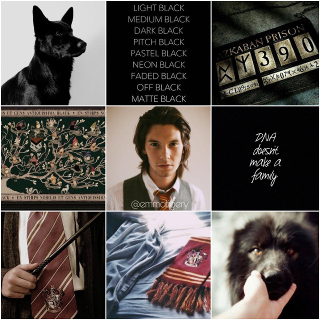 Sirius Black aesthetic 🖤🐾 メメメメメメメメメメメメメメメメメメメメメメ Hello everyone! I am so sorry for not posting for a while. I had some tests and I didn't have time to do any edits that I can post ! Besides, I am in 5 house wars at the moment, so I already have to do a lot of edits.  I wanted to ask if anyone wants to be tagged in my posts. If yes - write in the comments or dm me ♡ Hope you're having a nice day ! ☀️  -Emma Tigery  ♡  ✺✺✺✺✺✺✺✺✺✺✺✺✺✺✺✺✺✺✺✺✺✺✺✺✺✺✺  ~һѧṡһṭѧɢṡ~    #freetoedit #actor #siriusblack #azkaban #dog #black #collage #aesthetic #dark #gryffindor #picsart #harrypotter #movie #interesting #people #man #boy #cute #rip