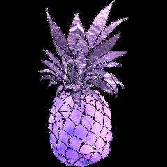 ananas purple paradise