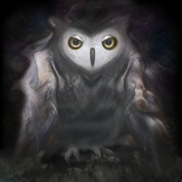 freetoedit transformation owl