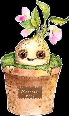 mandrake nevillelongbottom neville sprout harry_potter freetoedit