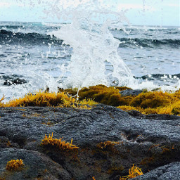 hawaii waves photography