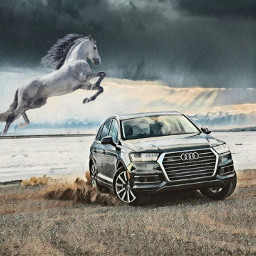 freetoedit horse car audi nature