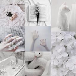 aesthetic freetoedit white aestetic