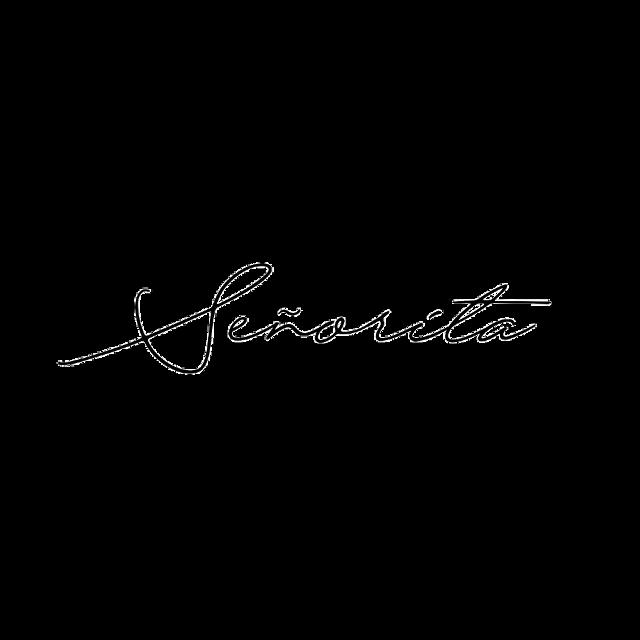 #señorita #senorita #shawnmendes #shawn #mendes #mendesarmy #camilacabello #camila #freetoedit