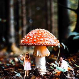 ectinypeople tinypeople littlepeople forestlife mushroom freetoedit