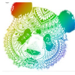 mandala osopanda animal colores colorpaint