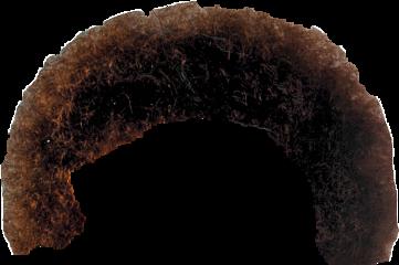 bobross afro freetoedit