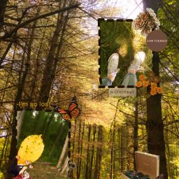 forest forestlife forestwalk forestgreen yellowleaves freetoedit