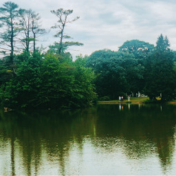 freetoedit reflection pond green growth