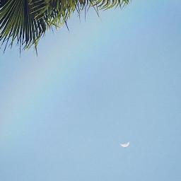 moon nature natureaesthetic beauty beautiful